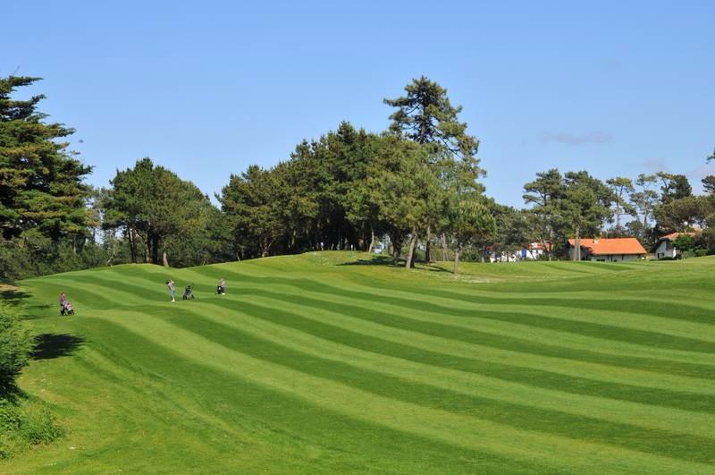 golf-chiberta4