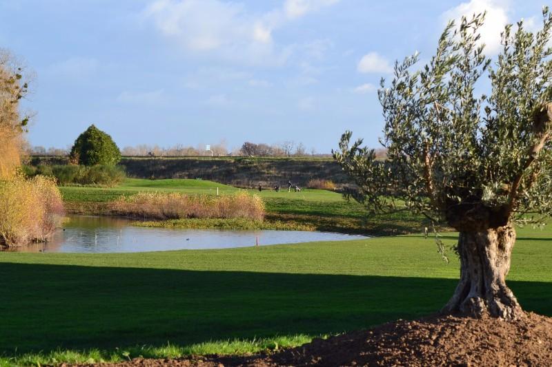 golf-la-carte4
