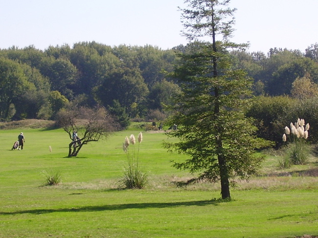 golf-picardiere4